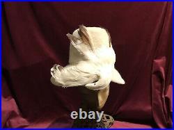 40s Felt Hat Bird White Feathers Vintage 60s Creme Roni Tilt