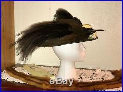 Antique 1910s Hat Edwardian Era Wide Brim Rare Taxidermy Bird of Paradise Millin