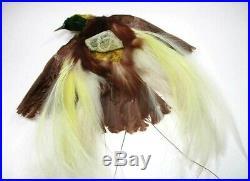 Original Antique Victorian Women's Hat Real Taxidermy Stuffed Bird Hat Trim
