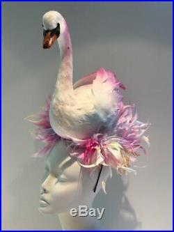 Swan Madhatter Facinator
